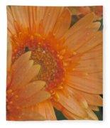 Peach Daisy Cluster Fleece Blanket