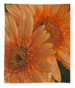 Peach Daisy Fleece Blanket