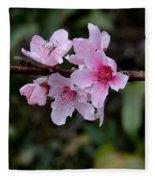 Peach Tree Blooms Miskitos Swoon Fleece Blanket