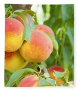 Peaches  Fleece Blanket