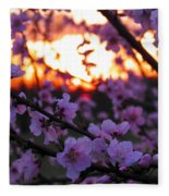 Peachy Sunset 3 Fleece Blanket