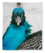 Peacock Front View Fleece Blanket
