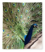 Peacock Show Fleece Blanket