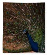 Peacock Show Off Fleece Blanket