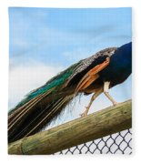 Peacock Strut Fleece Blanket