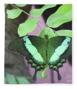 Peacock Swallowtail Fleece Blanket
