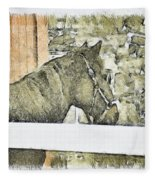 Peanut Fleece Blanket
