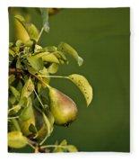 Pear Tree Fleece Blanket
