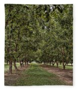 Pecan Orchard Sahuarita Arizona Fleece Blanket