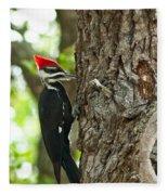 Pecking Woodpecker Fleece Blanket