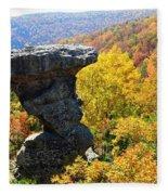 Pedestal Rock Fleece Blanket