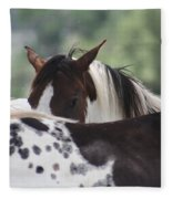 Peek A Boo Fleece Blanket