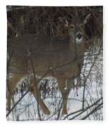 Peek A Boo Deer Fleece Blanket