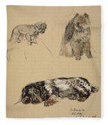 Pekinese, Chow And Spaniel, 1930 Fleece Blanket