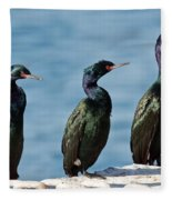 Pelagic Cormorants Fleece Blanket