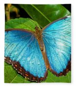 Peleides Blue Morpho Fleece Blanket
