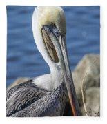 Pelican By The River Fleece Blanket
