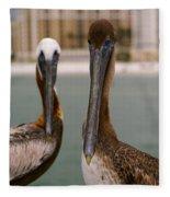 Pelican Couple Fleece Blanket