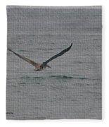 pelican Flying Low Fleece Blanket