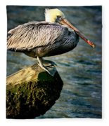 Pelican On A Pole Fleece Blanket