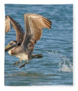 Pelican Taking Off Fleece Blanket