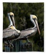 Pelican Threesome Fleece Blanket