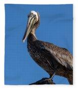 Pelican Watch Fleece Blanket