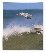 Pelicans 3870 Fleece Blanket