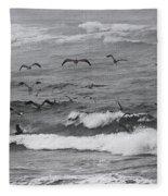 Pelicans Lunching At Ft. Stevens Oregon Fleece Blanket