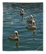 Pelicans On The Water In Key West Fleece Blanket
