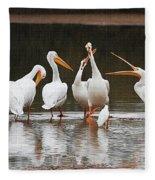 Pelicans Singing Auld Lang Syne Fleece Blanket