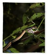 Peninsula Ribbon Snake Fleece Blanket