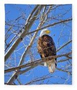 Perched Bald Eagle Fleece Blanket