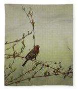 Perching Finch Fleece Blanket