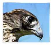 Peregrine Falcon Tashunka Fleece Blanket