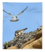 Peregrine Falcons - 2 Fleece Blanket