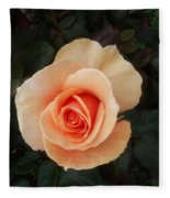 Perfect Peach Rose Fleece Blanket