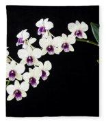 Perfect Phalaenopsis Orchid Poster Fleece Blanket