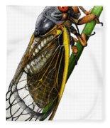 Periodical Cicada Fleece Blanket