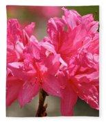 Periscope Pink Fleece Blanket