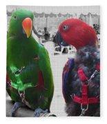 Pet Parrots In A Cafe Fleece Blanket