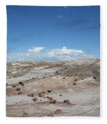 Petrified Forest Fleece Blanket