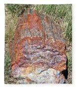 Petrified Stump Fleece Blanket