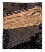 Petrified Wood On A Pedestal Fleece Blanket