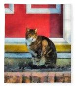 Pets - Tabby Cat By Red Door Fleece Blanket
