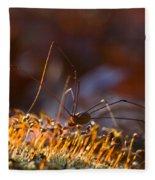 Phalangid Among The Moss Capsules Fleece Blanket