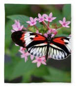 Piano Key Butterfly On Pink Penta Fleece Blanket