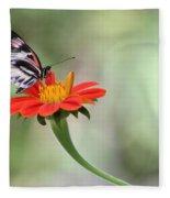 Piano Wings Butterfly Fleece Blanket