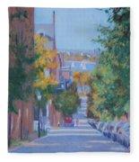 Pickney Street Fall Fleece Blanket