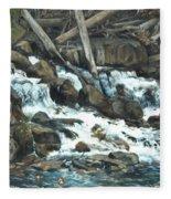 Picnic At The Falls Fleece Blanket